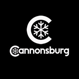 Cannonsburg