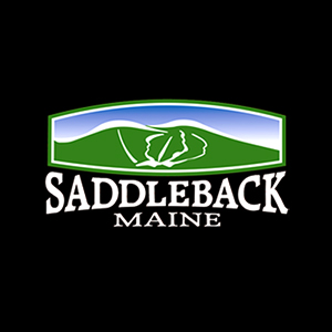 Saddleback Inc