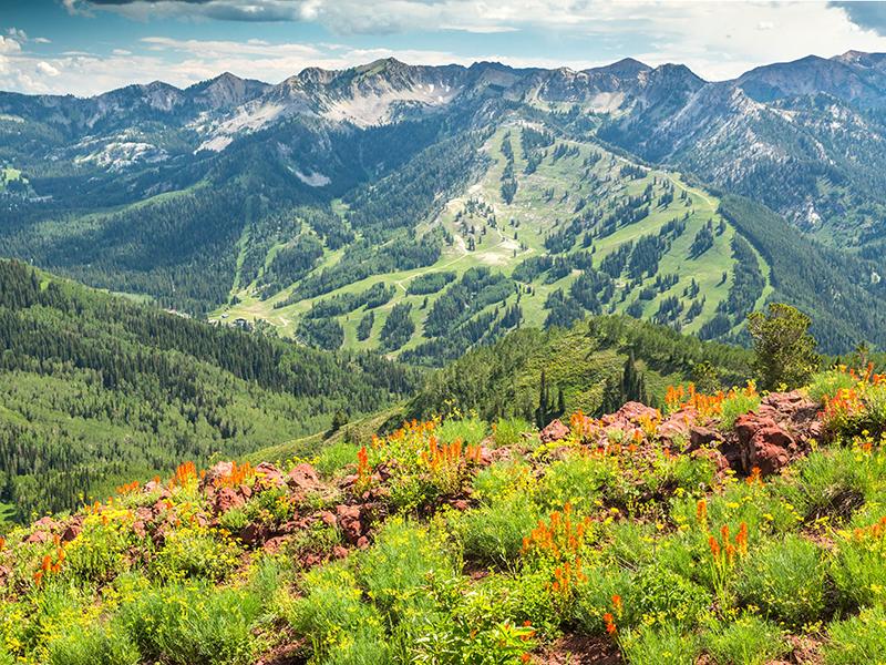 Solitude Mountain Resort Summer